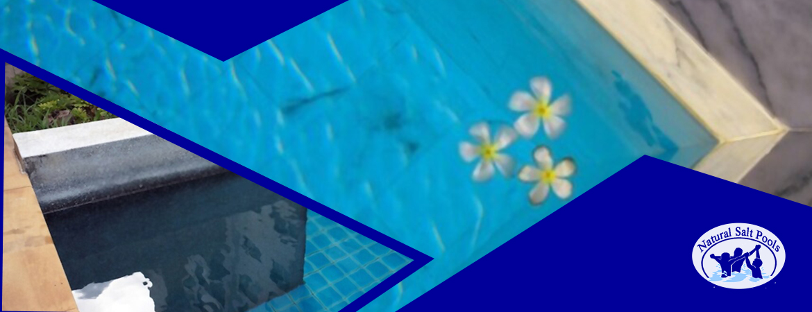 pool-stain-removal-service-for-inground-swimming-pool-with-stains-and-jasmine-flower-floating-on-the-pool-water
